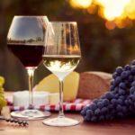 Bere un bicchiere di vino rosso a cena aiuta a dimagrire