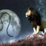 L' importanza di avere qualcuno del segno del Leone nella nostra vita