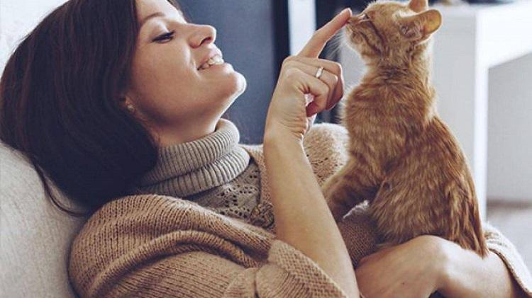 Un gatto che ti sceglie ha un significato spirituale ed è molto profondo