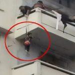 Il gatto finisce sul balcone: la nonna per salvarlo cala il nipotino dal 5° piano