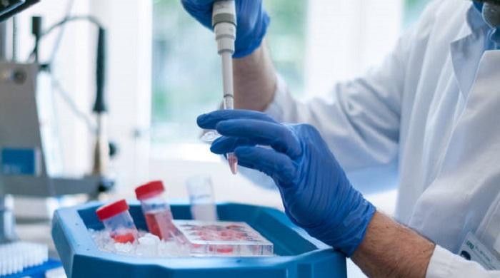 """Coronavirus, il vaccino italiano fa sperare: """"Gli anticorpi bloccano il virus"""""""